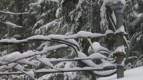 Линии электропередач и телефонные линии соединяясь для того чтобы расквартировать покрытый в снеге видеоматериал