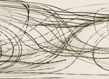 линии Стоковая Фотография