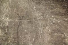 Линии Nasca, Перу Стоковая Фотография RF