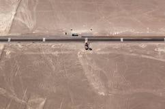 Линии Nazca дерева и рук Стоковое фото RF