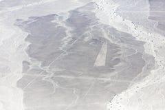 Линии Nazca от воздушных судн Стоковые Изображения