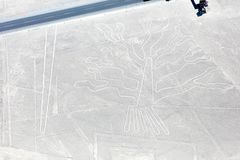 Линии Nazca от воздушных судн Стоковые Фото