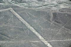Линии Nazca Стоковое Фото
