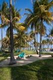 линия берег пляжа miami стоковые изображения rf