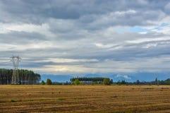 Линия высоковольтных электрических поляков против фона полей Стоковая Фотография RF