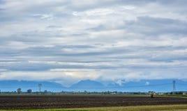 Линия высоковольтных электрических поляков против фона полей Стоковое Фото