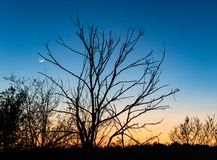 Линия днем и ночью стоковое фото