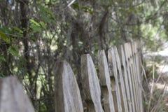 Линия загородки Стоковые Фотографии RF