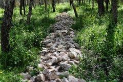 линия каменистые валы Стоковое Фото