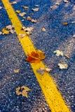 Линия дороги Стоковые Фотографии RF