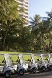 линия острова hamilton гольфа тележек Стоковое Фото