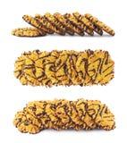 Линия печений изолированных над белой предпосылкой Стоковое Изображение