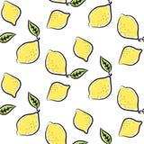 Линия покрашенная картина лимона вектора doodle безшовная Стоковые Изображения