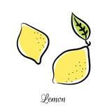 Линия покрашенный значок лимона вектора doodle Стоковое Изображение RF