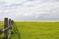линия прерия ландшафта загородки стоковое фото rf