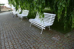 Линия пустых белых стендов в парке стоковая фотография