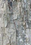 Линия расшива Стоковое фото RF