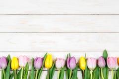 Линия розовых и желтых тюльпанов лежа на белом деревянном backgroun Стоковые Фото