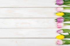 Линия розовых и желтых тюльпанов лежа на белом деревянном backgroun Стоковые Изображения