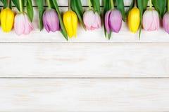 Линия розовых и желтых тюльпанов лежа на белом деревянном backgroun Стоковое фото RF