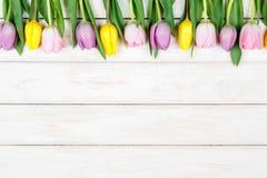 Линия розовых и желтых тюльпанов лежа на белом деревянном backgroun Стоковые Фотографии RF