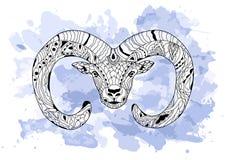 Линия рука искусства рисуя черный штоссель изолированный на белой предпосылке с голубой акварелью закрывает Стиль Dudling Tatoo Z Стоковые Изображения