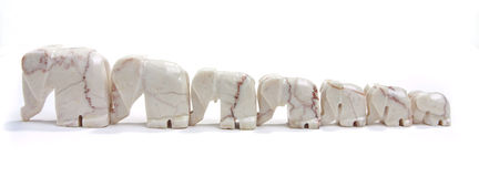 линия слонов стоковое фото