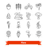 Линия установленные значки флоры тонкая искусства Жизнь растений иллюстрация штока