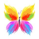 линия цвета бабочки щеток брызгает вектор Стоковое Фото