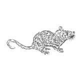 Линия чертеж домовой мыши Стоковые Изображения