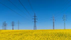 Линия электропередач в поле рапса Napus капусты Электрическая и возобновляющая энергия стоковые изображения rf
