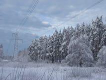 Линия электричества в зиме стоковые фото