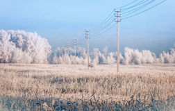 Линия электропередач в снеге покрыла поле стоковая фотография
