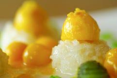 Липкий рис с мангоом Стоковые Фото