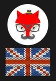 Лиса битника с флагом Grait Британии Стоковая Фотография