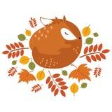 Лиса вектора стилизованная спать в упаденных листьях Лиса шаржа осенью Жителя леса иллюстрация детей Стоковое Изображение