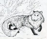 Лиса зимы Стоковые Фотографии RF