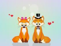 Лисицы в влюбленности бесплатная иллюстрация