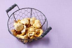 лисичка золотистая Грибы в корзине провода Стоковые Изображения RF