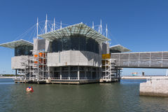 Лиссабон Oceanarium, Parque das Nacoes, экспо Стоковое Изображение RF