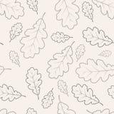 листает картина дуба безшовная Стоковые Изображения RF
