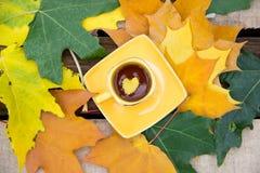 Листайте в желтой чашке чаю на поддоннике с верхней частью листьев осени Стоковые Фотографии RF