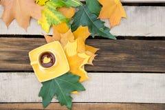 Листают в чашке чаю на поддоннике с листьями осени на животики Стоковое Изображение