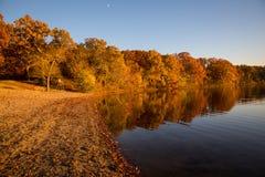 Листва осени на озере Стоковое Изображение