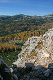 Лиственницы Dolina Triglavskih Jezer осени Triglav NP Стоковое фото RF