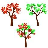 Лиственное дерево в 4 сезонах - весна, лето, осень, зима Природа и экологичность Природный объект для дизайна или парка ландшафта иллюстрация вектора