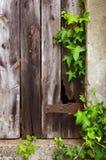 листво двери старое стоковая фотография