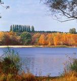 листво осени Стоковые Изображения