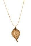 листовое золото березы Стоковая Фотография RF