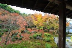 Листопад на виске Enkoji, Киото, Японии Стоковое Изображение